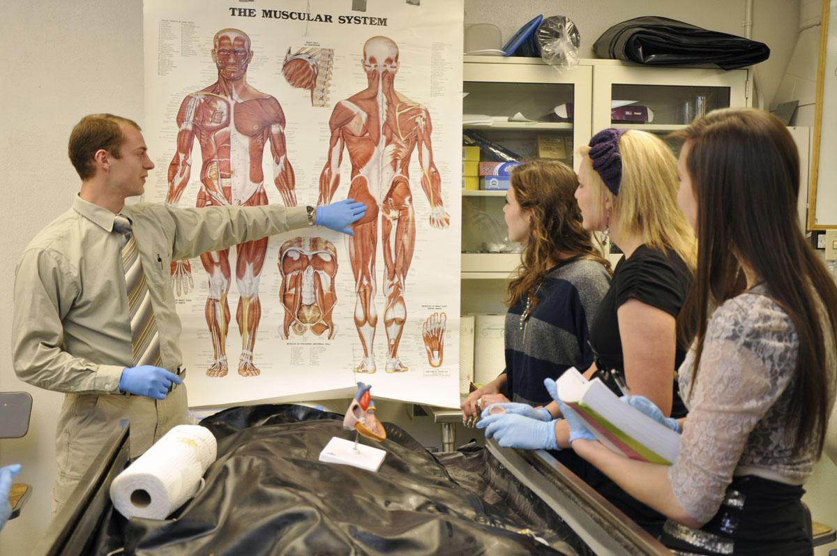 Cadavers give students hands-on experience - The Utah Statesman