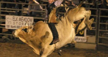 Page leads USU in home rodeo