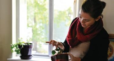 Students avert pet restrictions, grow plants