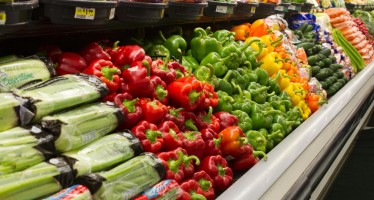 Nutrition program educates students on a budget